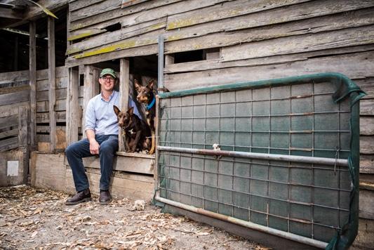 Tony Financial Review portrait